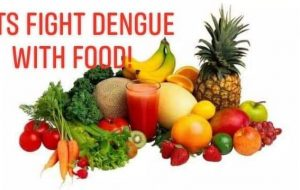 Dengue Fever Food Instruction